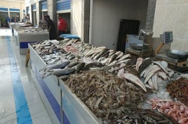 انخفاض البلطي.. أسعار السمك والجمبري اليوم الأحد